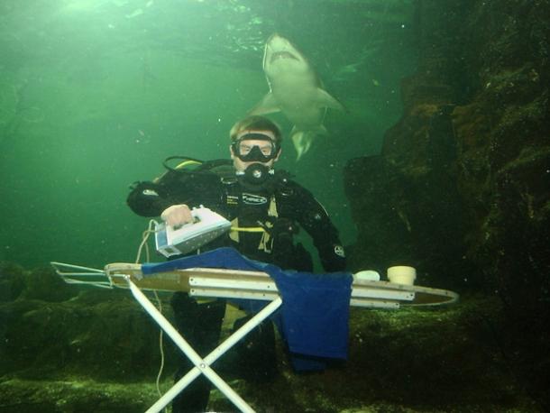 www.harrogateironing.co_.uk-Extreme-ironing-underwater-with-Shark